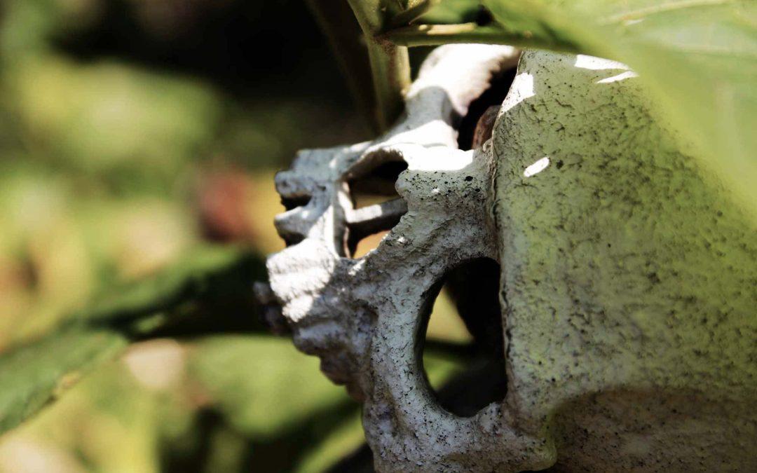 Counseling Filosofico – La Morte