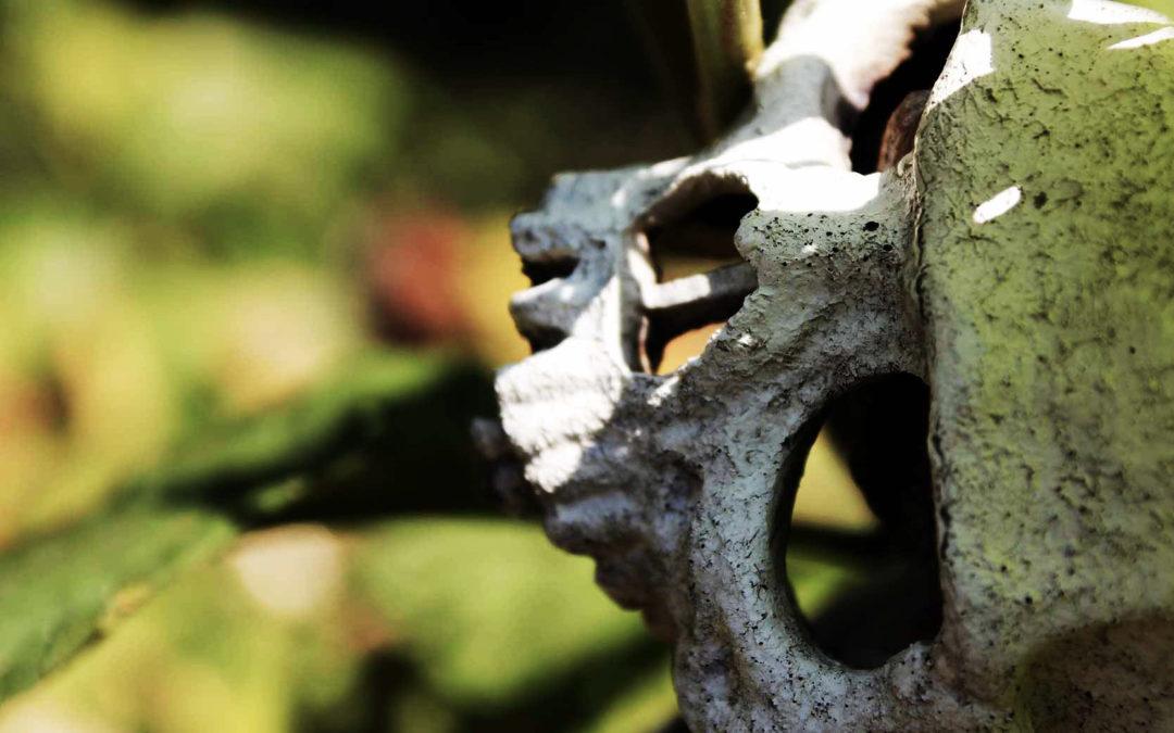 Counseling Filosofico – Morte